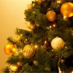 「クリぼっち」はオーストラリアでも寂しい?日豪のクリスマスの過ごし方の違い4つと1つの発見